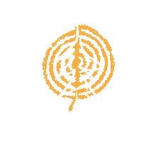 Sarah Abbott Amoeba Works Logo