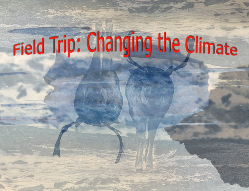 Field Trip: Changing the Climate